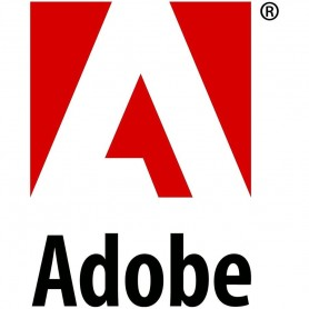 Acrobat Pro DC for teams - Annual Sub. 1 User